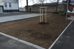 projekt_hanau_Scholl_001