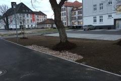 projekt_hanau_Scholl_002